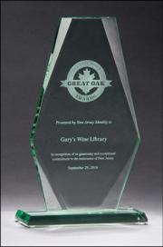 award-1_2